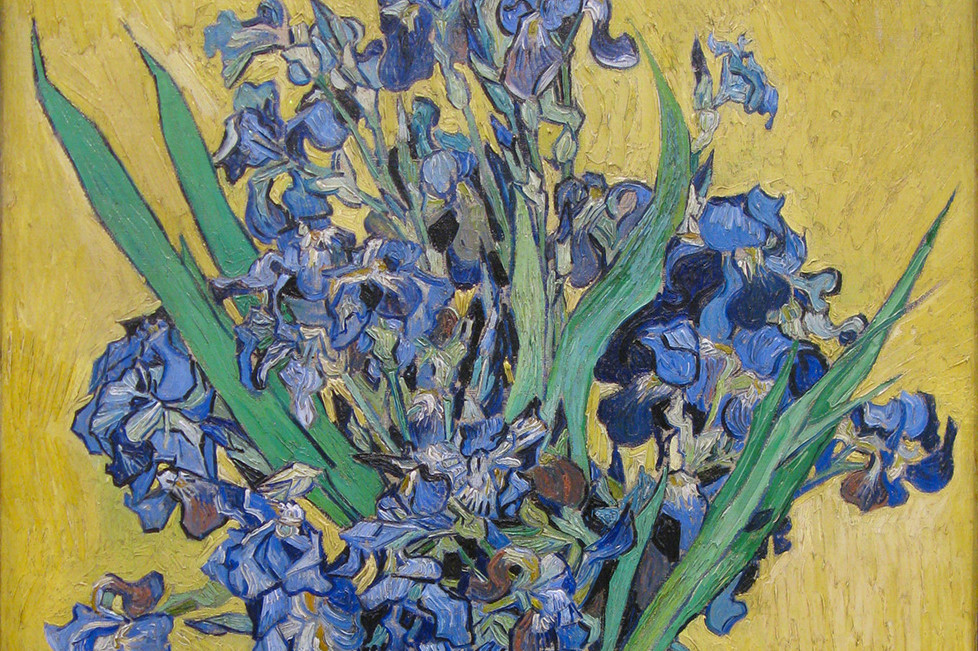 Vase with Irises Against a Yellow Background and The Milkmaid: Van Gogh and Vermeer